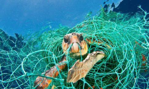 海洋プラスチック漁網