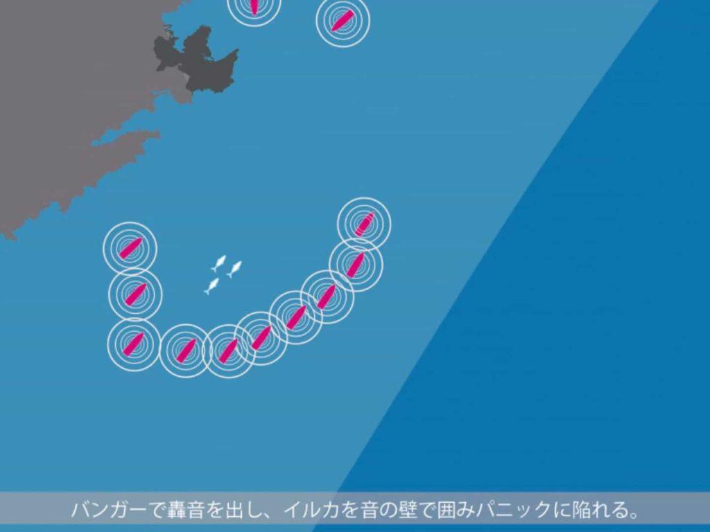 イルカ追い込み漁